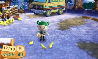 『とびだせ どうぶつの森 amiibo+』ハトに餌やり