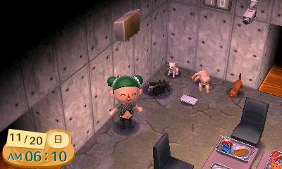 『とびだせ どうぶつの森 amiibo+』3DS