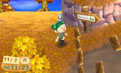 『とびだせ どうぶつの森 amiibo+』キャンプ場看板2