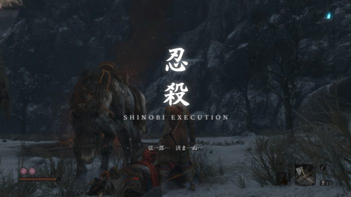 忍殺-SHINOBI EXECUTION-