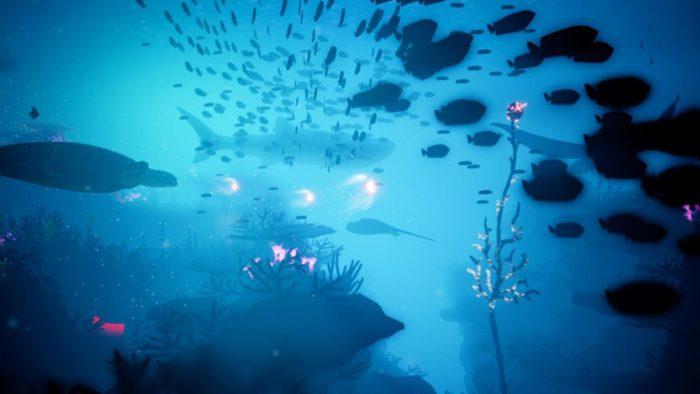 コーラル サンゴ海の探検